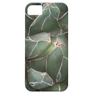 Succulent Plant Photo iPhone SE + iPhone 5/5S iPhone 5 Case