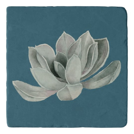 Succulent Plant Watercolor Painting Trivet