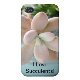Succulent Sedum Pink Jelly Bean Plant iPhone 4/4S Cases