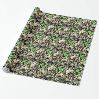Succulent Sempervivums - Pink & Green Wrapping Paper