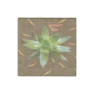 Succulentl Plant Natural, magnet. Stone Magnet