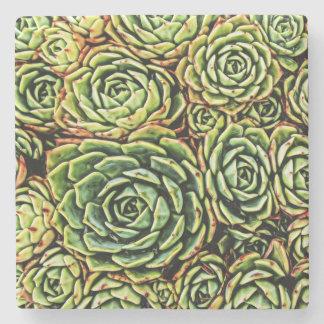 Succulents Coaster Stone Coaster