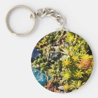 Succulents with Blue Glass Key Chain
