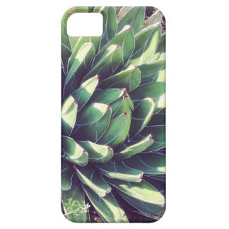 Succuliciousness iPhone 5 Cover