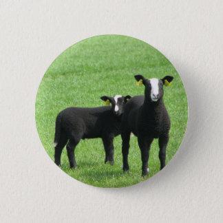 Sucking lambs 6 cm round badge