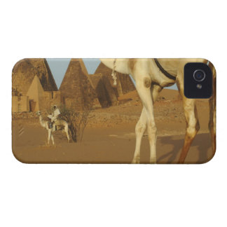 Sudan, North (Nubia), Meroe pyramids with Case-Mate iPhone 4 Case