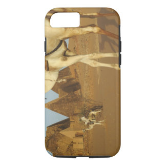 Sudan, North (Nubia), Meroe pyramids with iPhone 7 Case