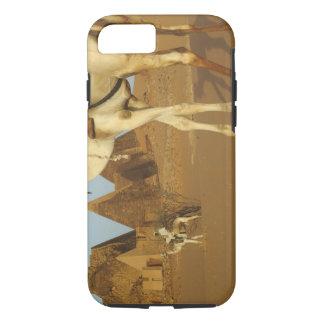 Sudan, North (Nubia), Meroe pyramids with iPhone 8/7 Case