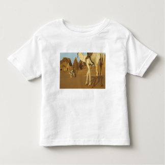Sudan, North (Nubia), Meroe pyramids with Toddler T-Shirt