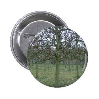 Sudbury Hall Orchard in Winter 6 Cm Round Badge