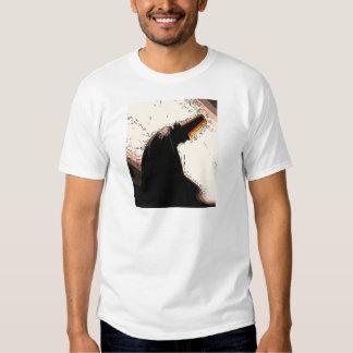 sufi dervish in zikr shirts