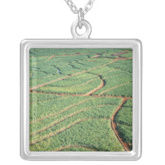 Sugar Cane Field Silver Plated Necklace