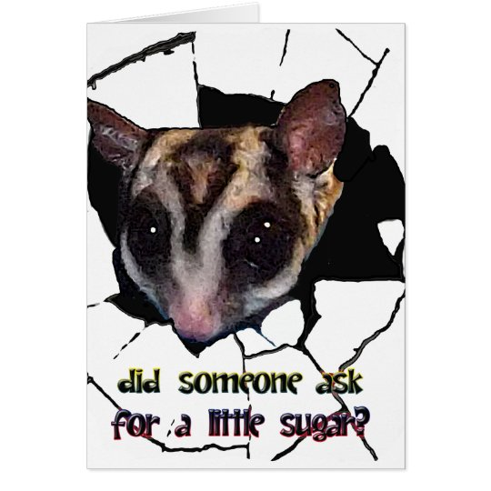 Sugar Glider Did Someone Ask for a Little Sugar Card