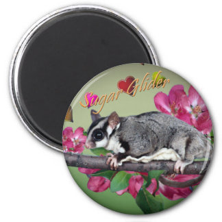 Sugar Glider Flowers and Hearts Magnets