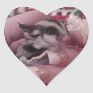 sugar glider heart sticker