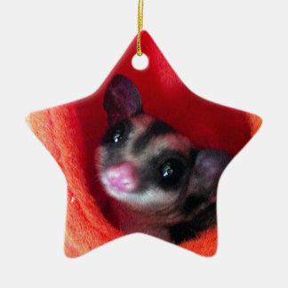 Sugar Glider in Orange Hanging Bed Christmas Ornament