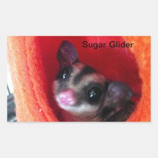 Sugar Glider in Orange Hanging Bed Rectangular Sticker