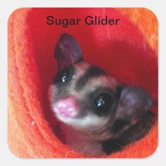 Sugar Glider in Orange Hanging Bed Sticker
