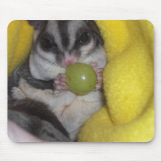 sugar glider mouse mouse mat
