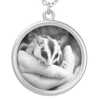 Sugar Glider necklace