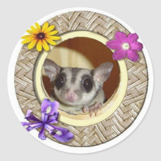 Sugar Glider Round Sticker