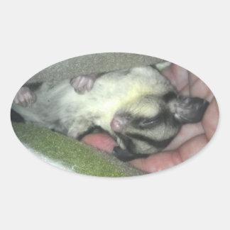 Sugar Glider Sleeping in Blanket Stickers