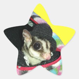 Sugar Glider Wearing a Hat Star Sticker