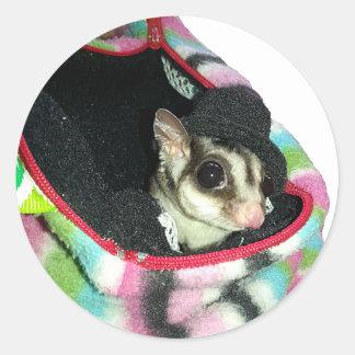 Sugar Glider Wearing a Hat Sticker