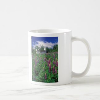 Sugar Hill Lupines, White Mountains Coffee Mug