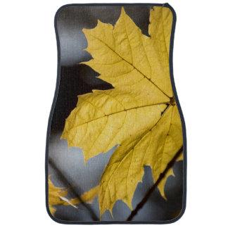 Sugar maple, fall car mat