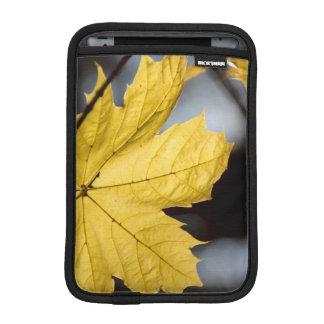 Sugar maple, fall iPad mini sleeve