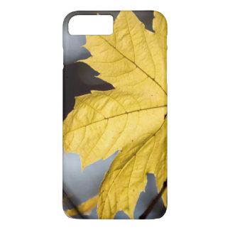 Sugar maple, fall iPhone 8 plus/7 plus case