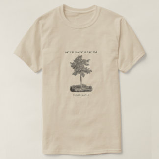 Sugar Maple Tree with Vintage Image T-Shirt