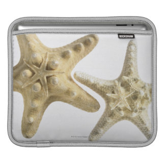 Sugar starfish on a thorny starfish iPad sleeve