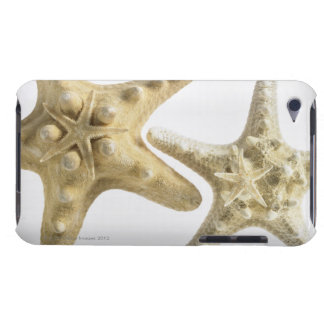 Sugar starfish on a thorny starfish iPod Case-Mate case