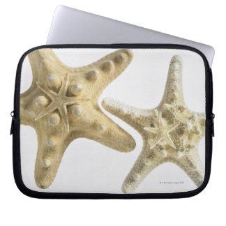 Sugar starfish on a thorny starfish laptop sleeve