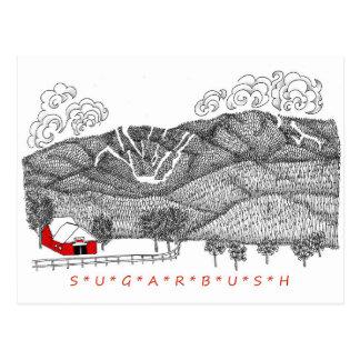 Sugarbush Vermont Postcard