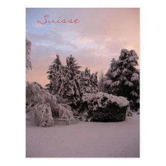 Suisse Postcard