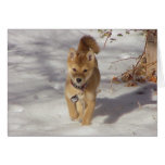Suki in the Snow Stationery Note Card