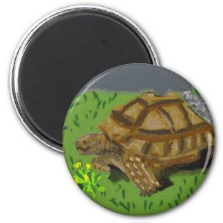 Sulcata Tortoise 6 Cm Round Magnet