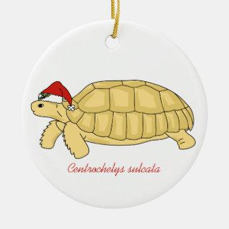 Sulcata Tortoise Christmas Ornament