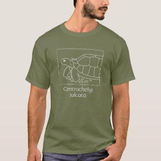 Sulcata Tortoise Shirt (box, white)