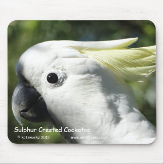 Sulphur Crested Cockatoo Mouse Mat