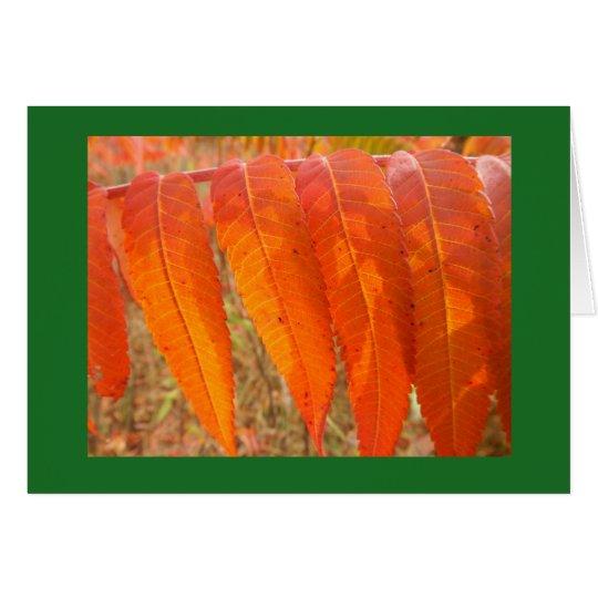 Sumac Leaf Blank Note Card