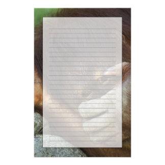 Sumatran Orangutan, Pongo pygmaeus Stationery