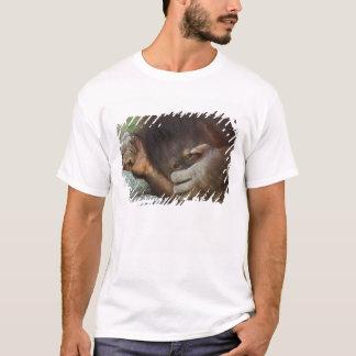 Sumatran Orangutan, Pongo pygmaeus T-Shirt