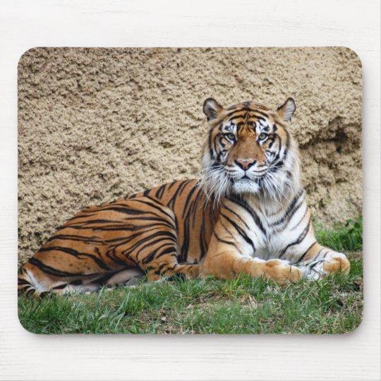 sumatran tiger 7 mouse pad