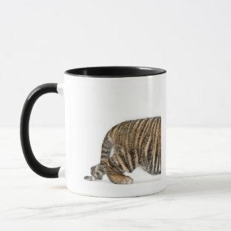 Sumatran Tiger cub 2 Mug