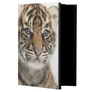 Sumatran Tiger cub Cover For iPad Air