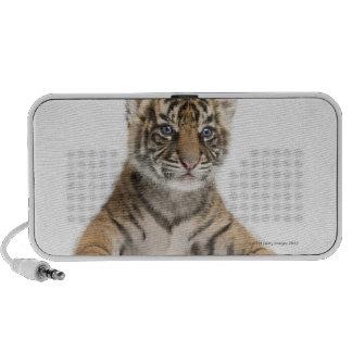 Sumatran Tiger cub Mini Speaker